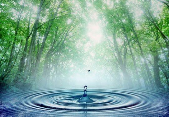 Equilibrio degli elementi naturali